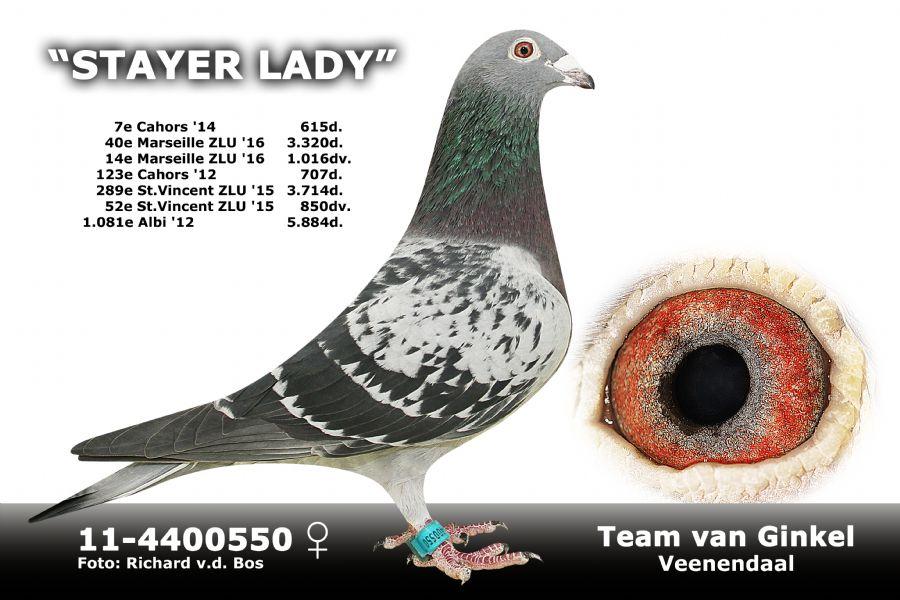 NL11-5500550