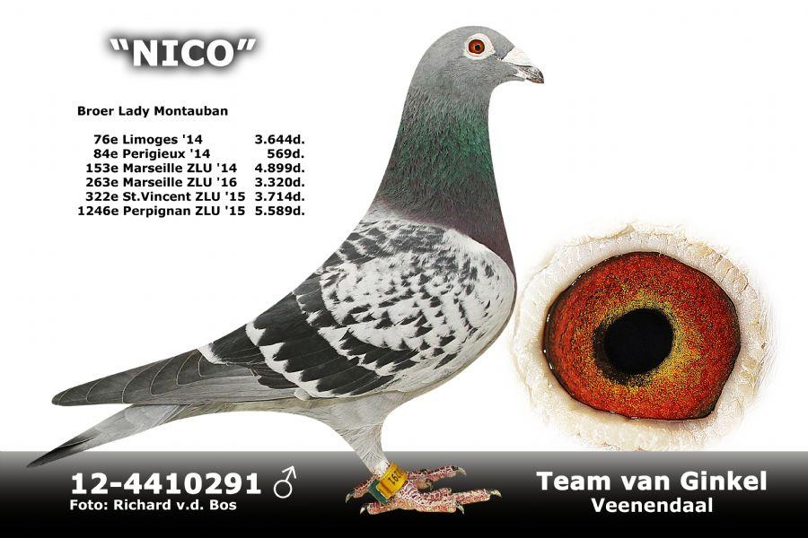 NL12-4410291