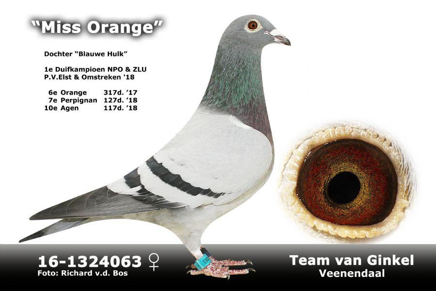 NL16-1324063