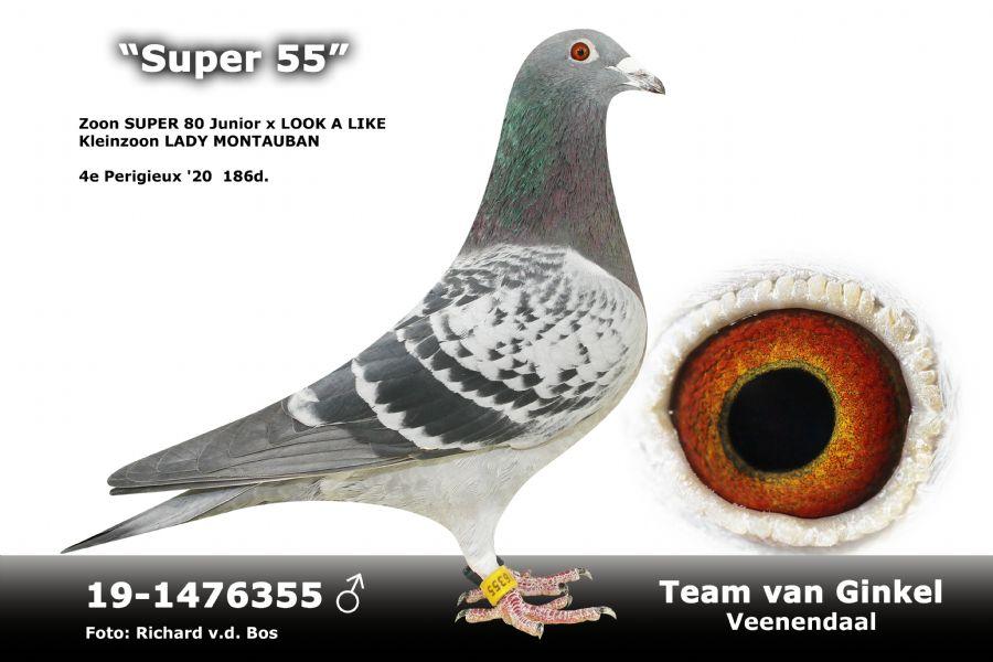 NL19-1476355