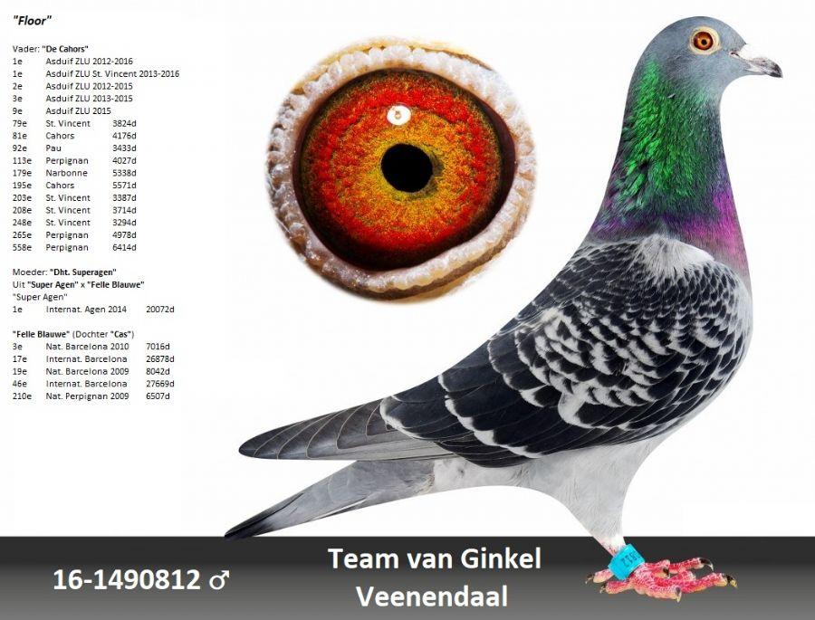 NL16-1490812