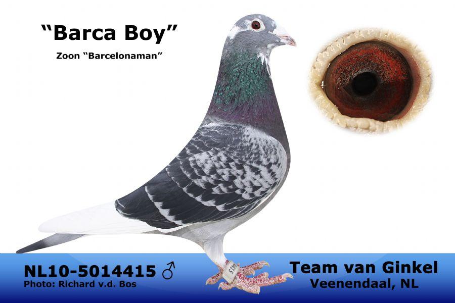 NL10-5014415