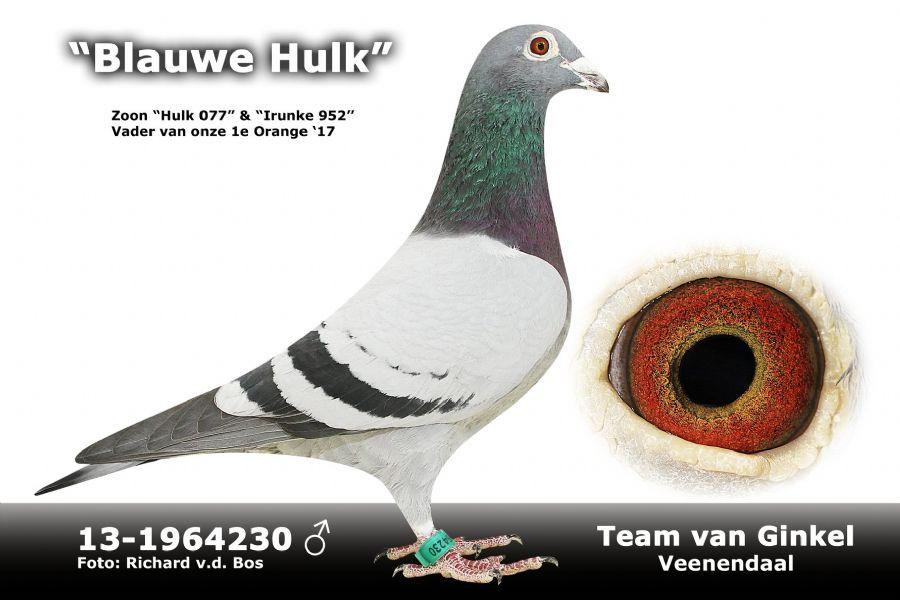 NL13-1964230