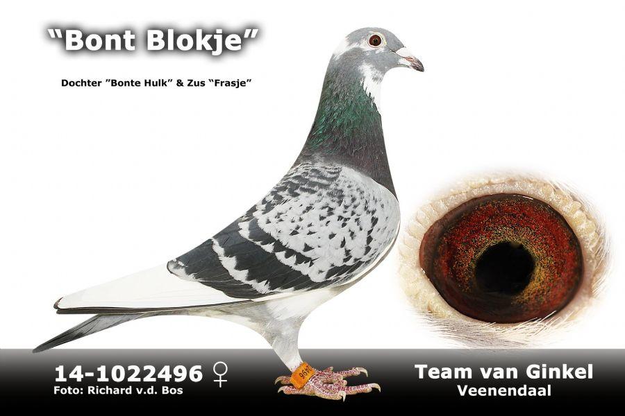 NL14-1022496