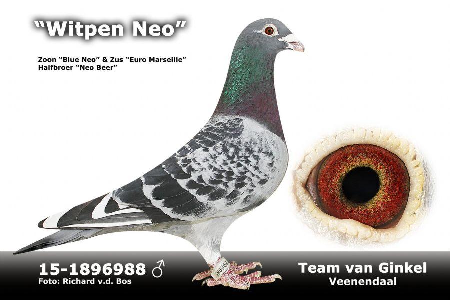 NL15-1896988